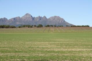 This beautiful farm comprising a total of  54.61 hectares is nestled in the Stellenbosch basin and has stunning views of both the ...