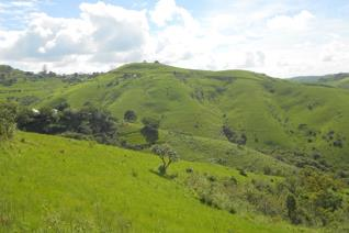 St.Faiths is 35km inland from the coast, the land for sale is 137ha of farmland. There are about +/-35 houses on the farm. The seller ...