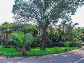 3 Bedroom House for sale in Marais Steyn Park - Edenvale