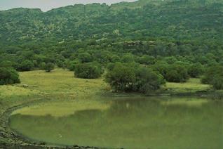 40 km vanaf die dorp le hierdie pragtige  414 ha ontspanningsplaas met verskeie wild ingesluit. Daar is 1 wildskamp met n netjiese 2.2 ...