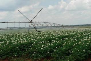 Irrigation farm with unlimited water supply. 21 Pivots to cover 317 ha. This can be expanded to 550 ha. Approximately 230 ha. ...