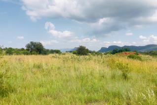 The estate is situated on ninety-two hectares of pristine bush veld land and is framed ...