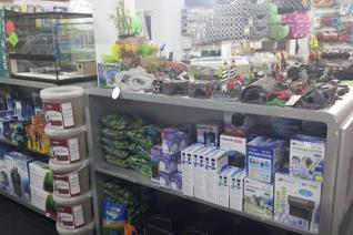 Pet shop for sale - all live stock included. Please note that the premises is rented and not part of the sale.  Richards Bay is ...