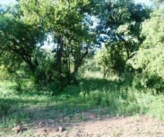 Vacant Land / Plot for sale in Kranspoort