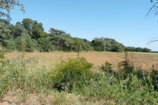 Farm for sale in Swartruggens - Swartruggens