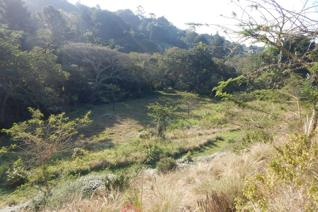 This beautiful big piece of land in Everton is 2.4170 hectares in total.  The land has ...