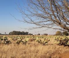 Farm for sale in Delmas