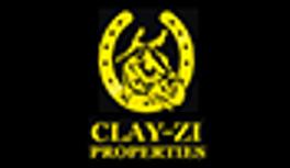 CLAY-ZI Properties