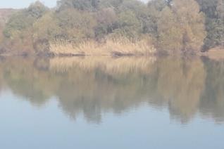 Waterregte:  130 ha Ingelyste waterregte. Besproeiing:  100 ha onder spilpunt besproeiing.  2 x 50 ha Spilpunte.  1 x 110 kw Elektriese ...