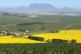 This 182.9 h farm close to Durbanville with stunning views of the surrounding hills, Table mountain and Blouberg has a lot of ...