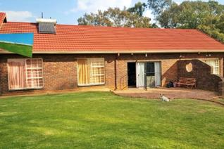 Smallholding for sale in sundale,delmas  bargain of the year!!! Neat property on 1.6h plot for sale plus 2 extra stands on each side of ...
