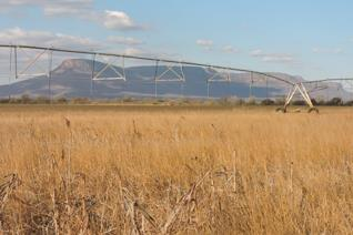 Currently under offer. Fully developed 214 Hectare Irrigation Farm ---- 17 hectare's Pivot irrigation --- 68 hectare  arable lands ...