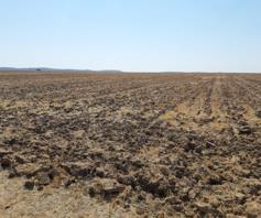 Farm for sale in Excelsior Rural