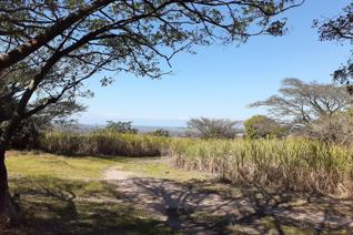 The farm has scenic views towards the ever warm Indian Ocean and inland views comprising ...