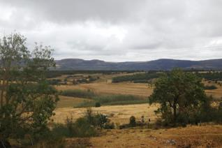 Valued property of 859ha in Utrecht area about 41km from Vryheid. This farm provide 2 houses both with 4 bedrooms. Borehole and ...