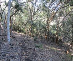Vacant Land / Plot for sale in Victoria Bay