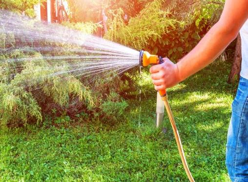 4 easy DIY musts to get your lawn looking great