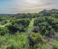 Vacant Land / Plot for sale in Chapman's Bay Estate