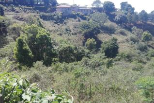 This large land of 15633 square meters is situated just on road of old main road in Bothas hill .If you wish to develop or build a ...