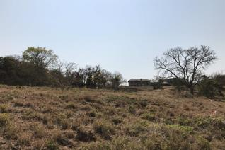 Newly released stands. Curro Academy will be established next to Elawini Estate over the next four years.