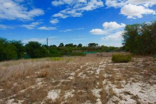 Beautiful smallholding (flat land) in sought after Morning Star. 4.4 ha vacant ...