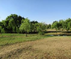 Vacant Land / Plot for sale in Rensburg