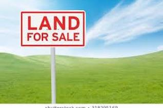 This land consists of 1003 square meters. The perfect area situated in Evander.  Great to build your dream home or if you are an ...