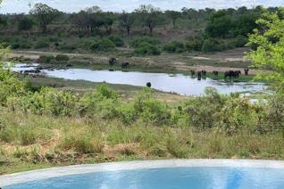 Set within the award winning Big 5 Mjejane Game Reserve , we are privileged to offer a ...