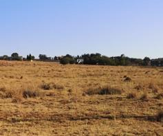 Vacant Land / Plot for sale in Henley On Klip