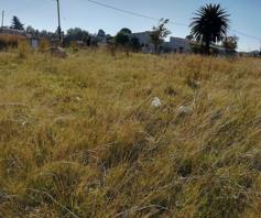 Vacant Land / Plot for sale in Balfour