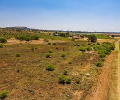 Vacant Land / Plot for sale in Allewynspoort