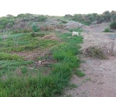 Vacant Land / Plot for sale in Paternoster