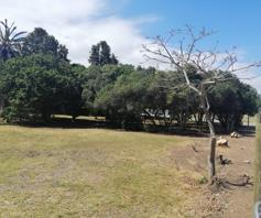 Vacant Land / Plot for sale in Bergsig