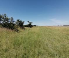 Vacant Land / Plot for sale in Wildebeeshoek A H