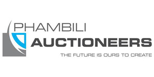 Property for sale by Phambili Auctioneers