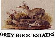Property for sale by Grey Buck Estates