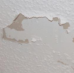 Remove Mould And Stains On A Ceiling Diy Lifestyle